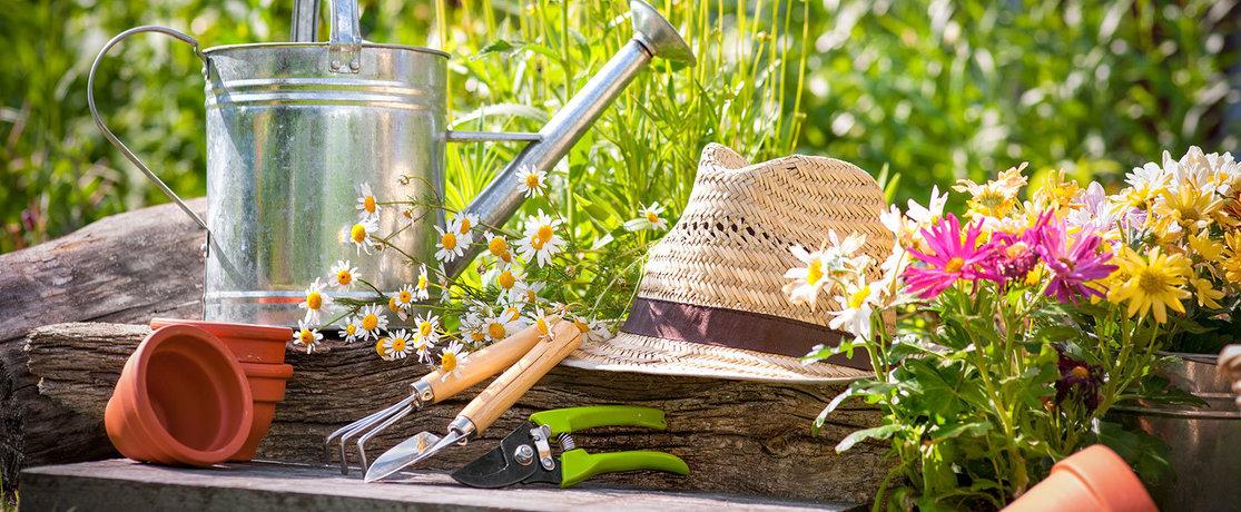 Garden, tools and hat in summer