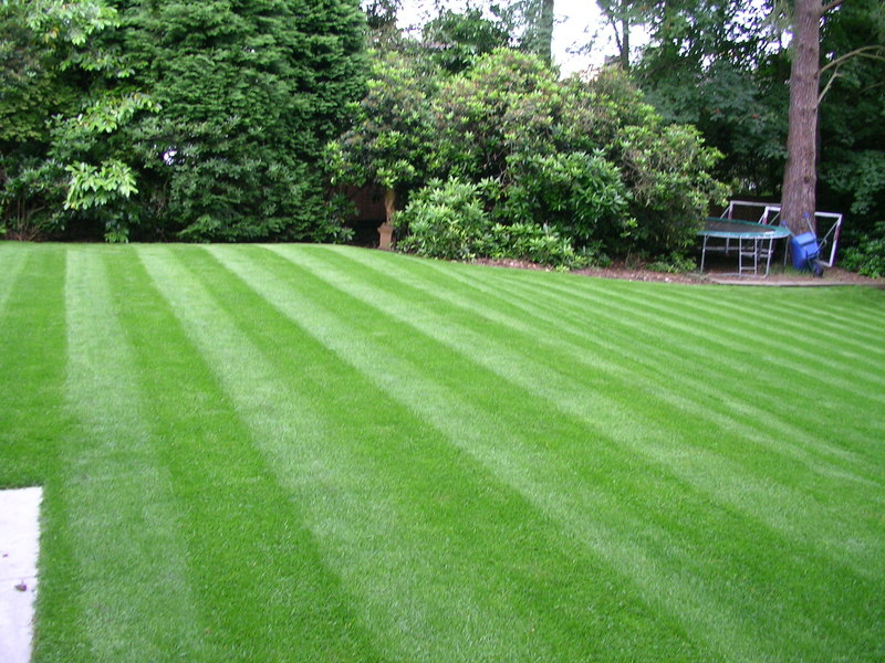 Southdown Landscapes Amp Turf Company Turf Suppliers And