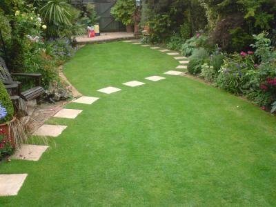 Apologise, but, green thumb lawn maintenance have forgotten