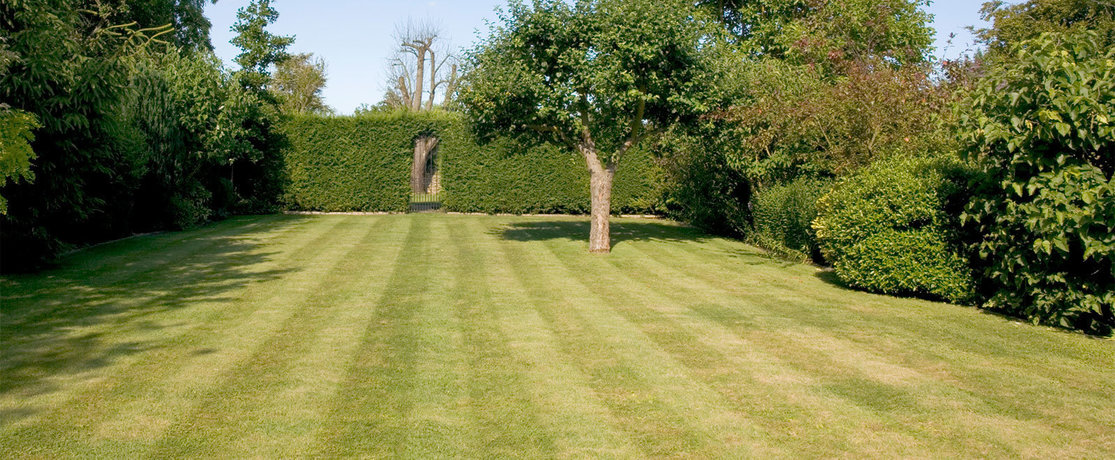 large lawn in garden leading to hedge with gate