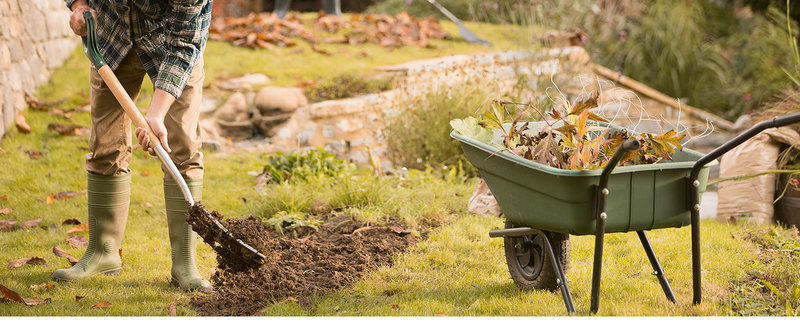 autumn gardening, leaves, wheelbarrow, man with spade