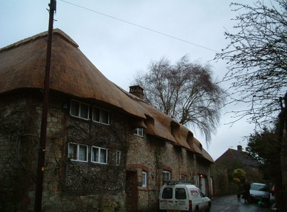 Primary thumb amberley.        re thatch    master thatchers south