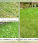 Square thumb renovation   moss