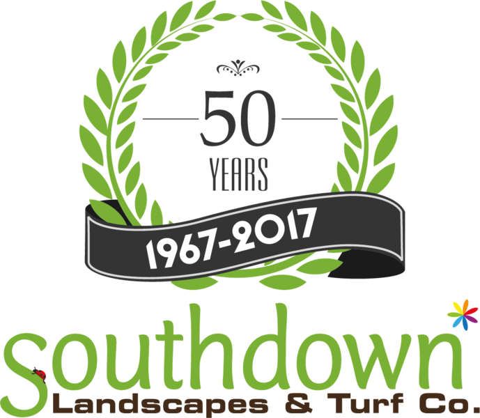 Gallery large southdown 50 year logo lockup colour