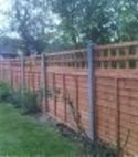 Square thumb timber panel fencing 3