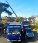 Square thumb crown reduction apex tree surgeons