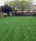Square thumb edinburgh lawn01 400 300 75 s c1
