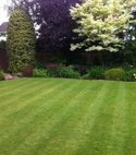 Square thumb wharfedale customers lawn1 800 598 75 s