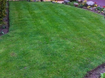 Primary thumb solihull lawn 598 800 75 s