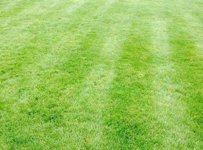 Primary thumb redcar lawn1 600 800 75 s