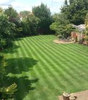 Square thumb lawn striped