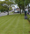 Square thumb commercial maintenance   mowing